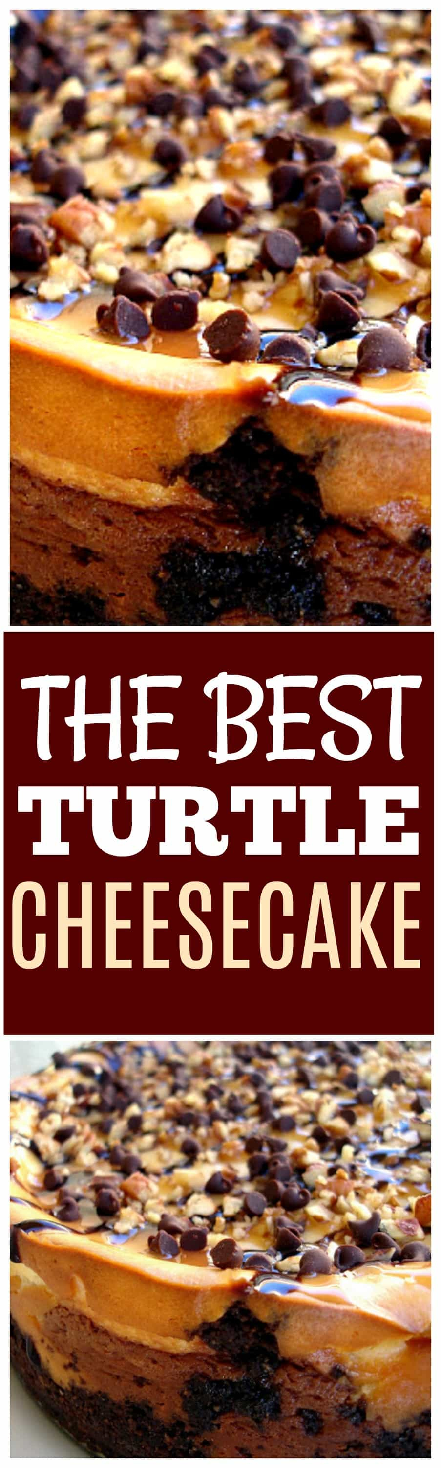 This Turtle Cheesecake is so creamy and topped caramel, nuts, and chocolate chips. the-girl-who-ate-everything.com