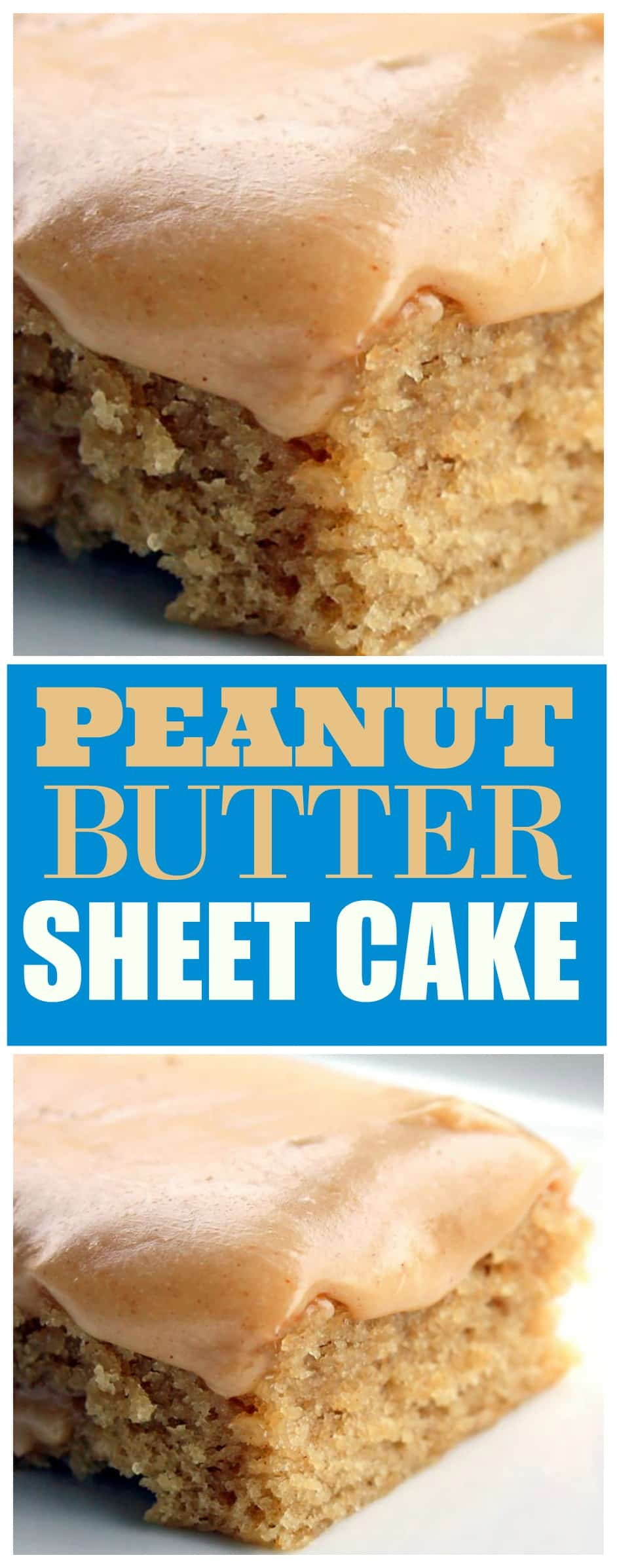This Peanut Butter Sheet Cake is a moist sheet cake topped with a gooey peanut butter glaze. Peanut butter lovers, this is your dessert! #peanut #butter #cake #recipe #sheet