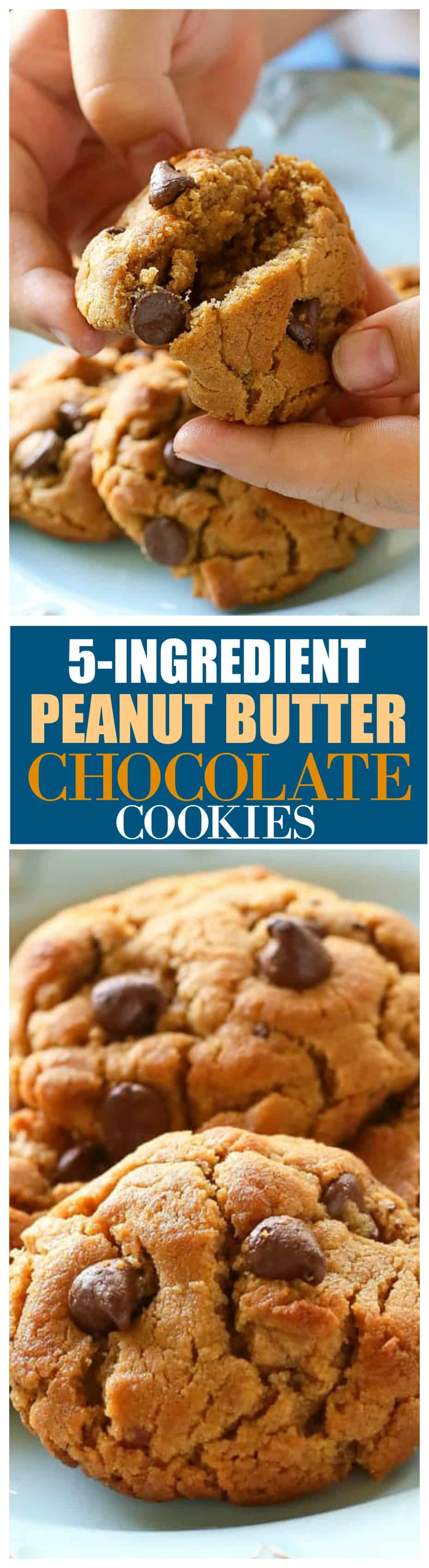 Flourless 5- Ingredient Peanut Butter Chocolate Chip Cookies - only a few ingredients and gluten free!