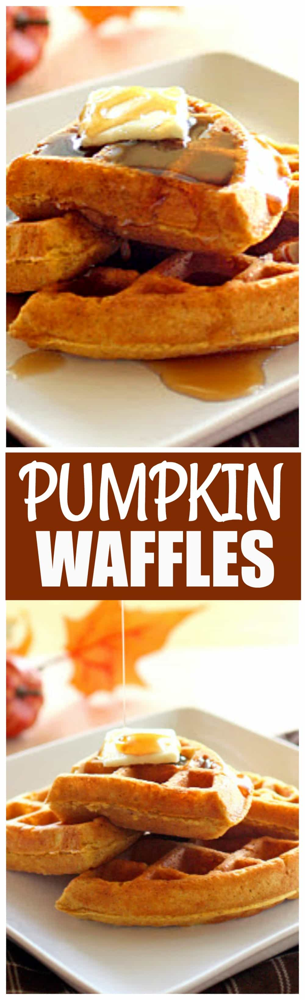 These pumpkin waffles are packed with spices and taste like fall for breakfast! #pumpkin #waffles #fall #breakfast #recipe