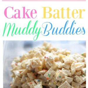 Cake Batter Muddy Buddies - fun to make with kids and a great snack! the-girl-who-ate-everything.com