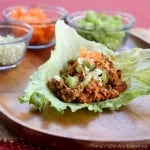 buffalo-wing-turkey-lettuce-wraps