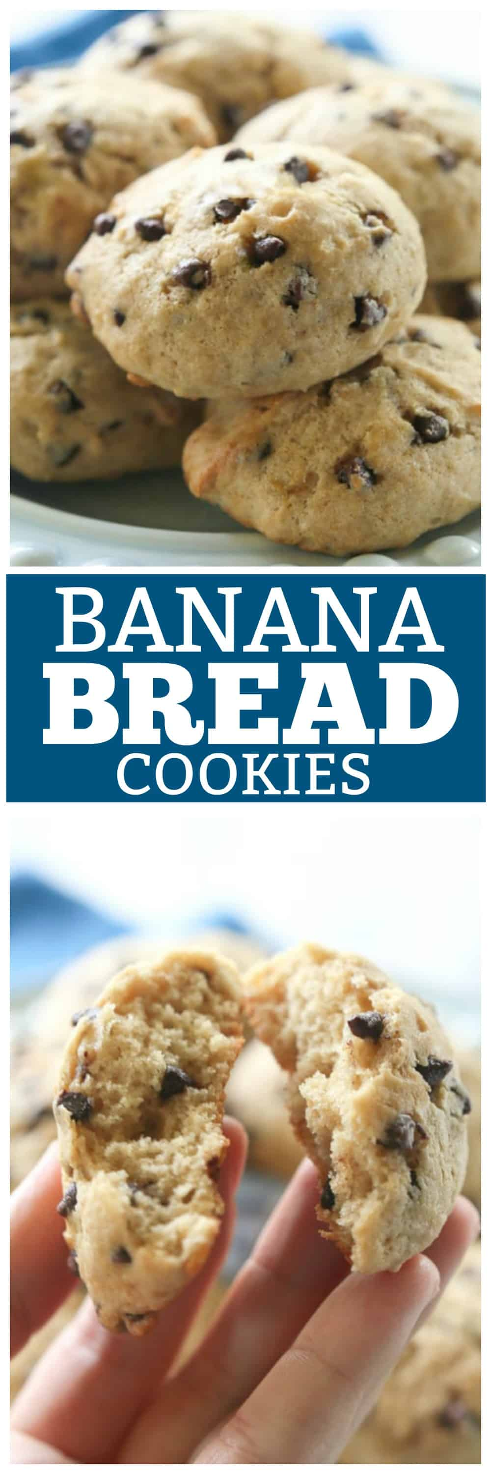 Banana Bread Cookies Recipe - The Girl Who Ate Everything