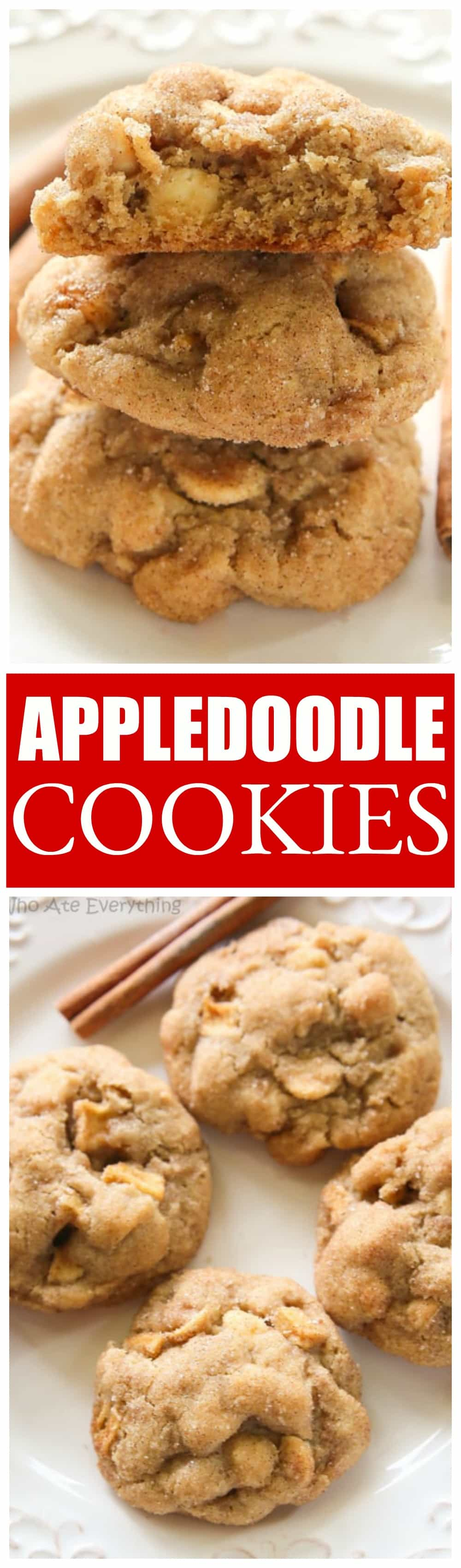 Appledoodle - a snickerdoodle meets an apple! This cookie is perfect for fall or anytime. the-girl-who-ate-everything.com
