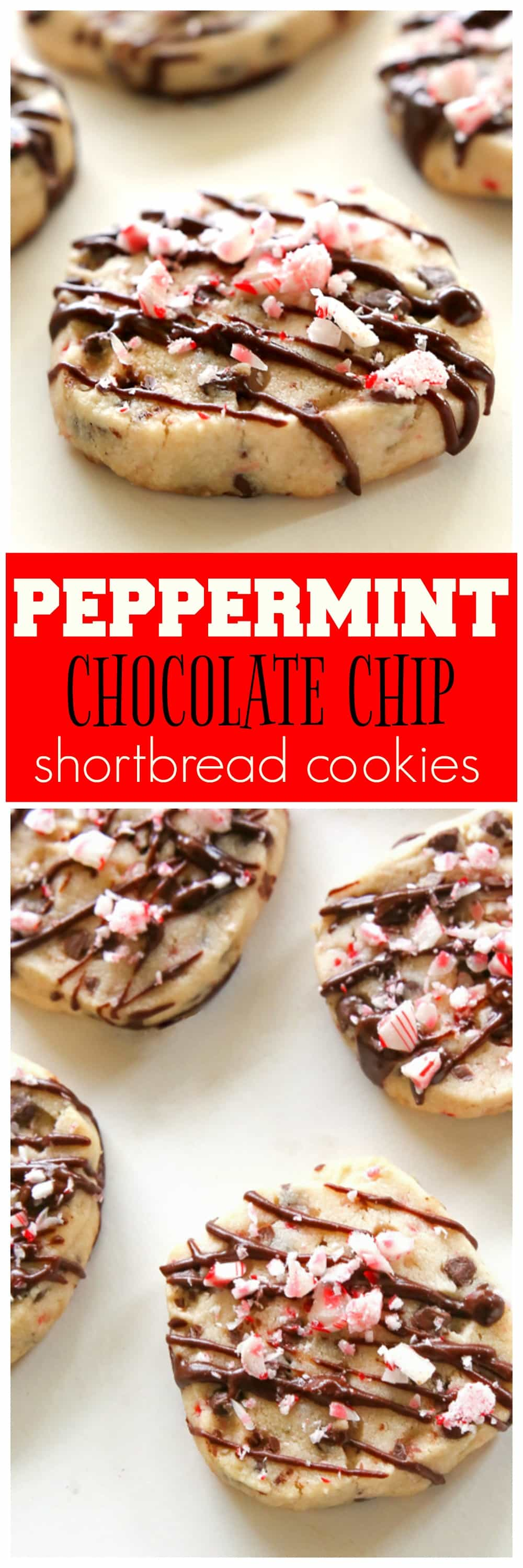 Peppermint Chocolate Chip Shortbread Cookies - The Girl Who Ate ...