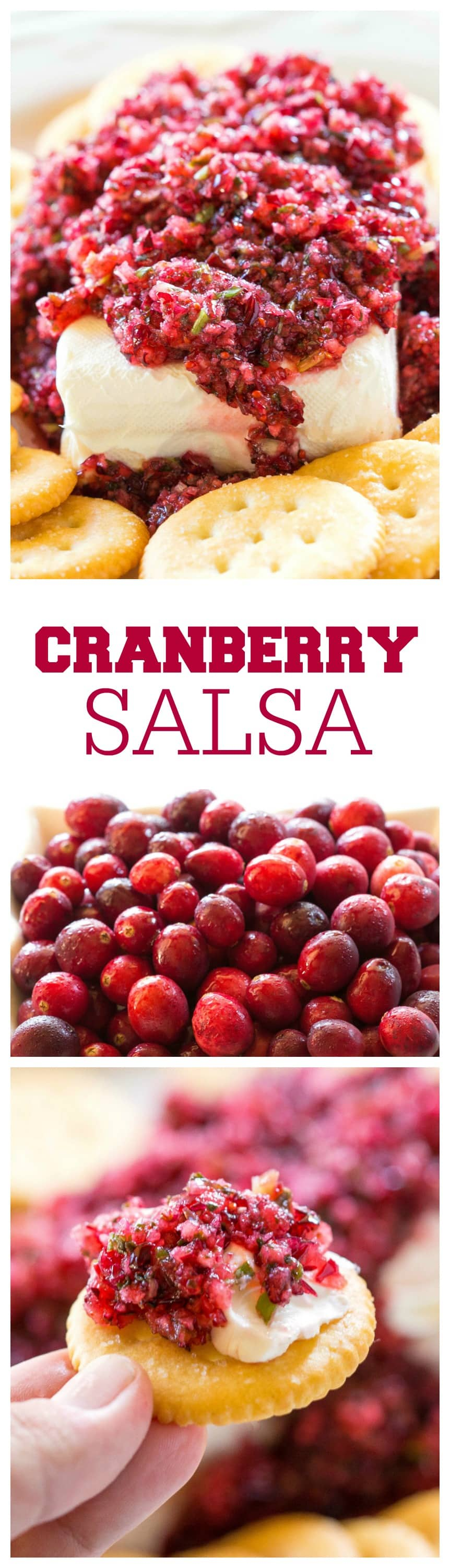 Fresh Cranberry Salsa served over cream cheese - this spicy and sweet combo is always a hit at parties. the-girl-who-ate-everything.com