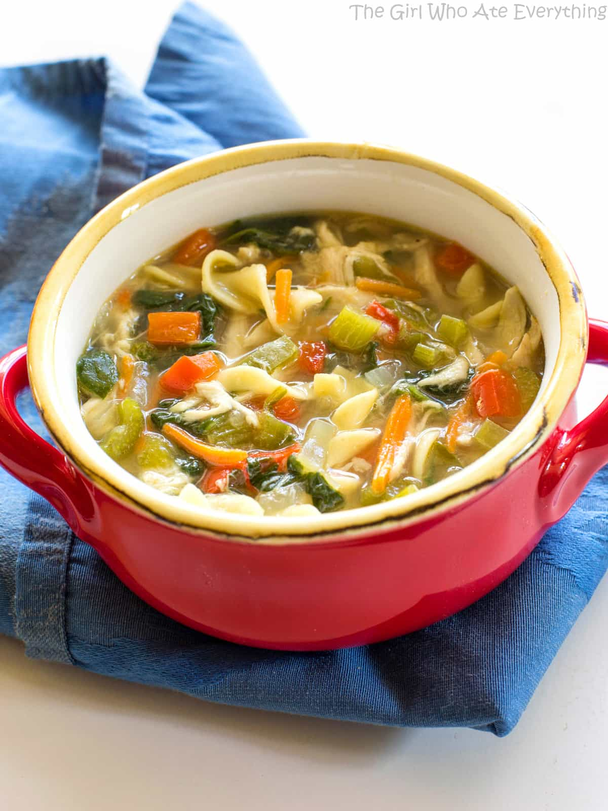 Homemade vegetable soup with chicken broth