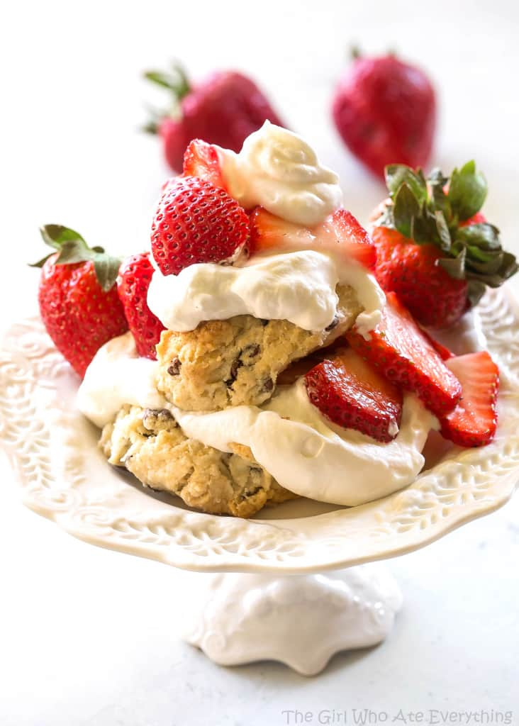 Chocolate Chip Strawberry Shortcakes - melt in your mouth buttery shortcakes with mini chocolate chips topped with strawberries and whipped cream. the-girl-who-ate-everything.com