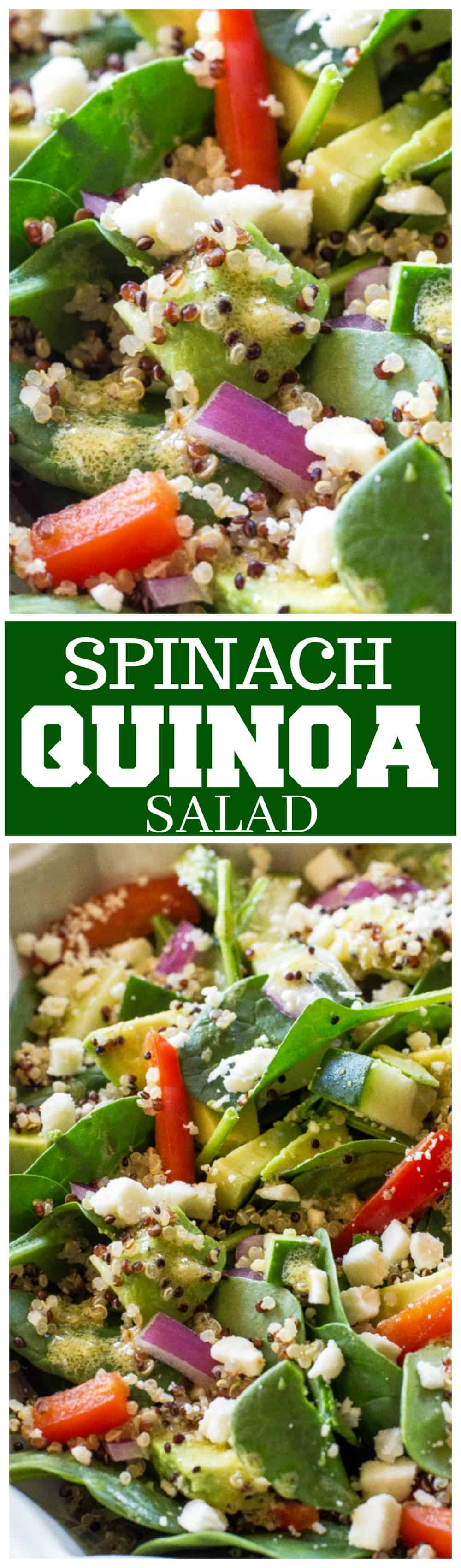 Spinach Quinoa Salad - full of rich healthy foods like cucumber, red bell pepper, avocado, and onion. This recipe is topped with a lemon dijon vinaigrette. #healthy #spinach #quinoa #salad #recipe