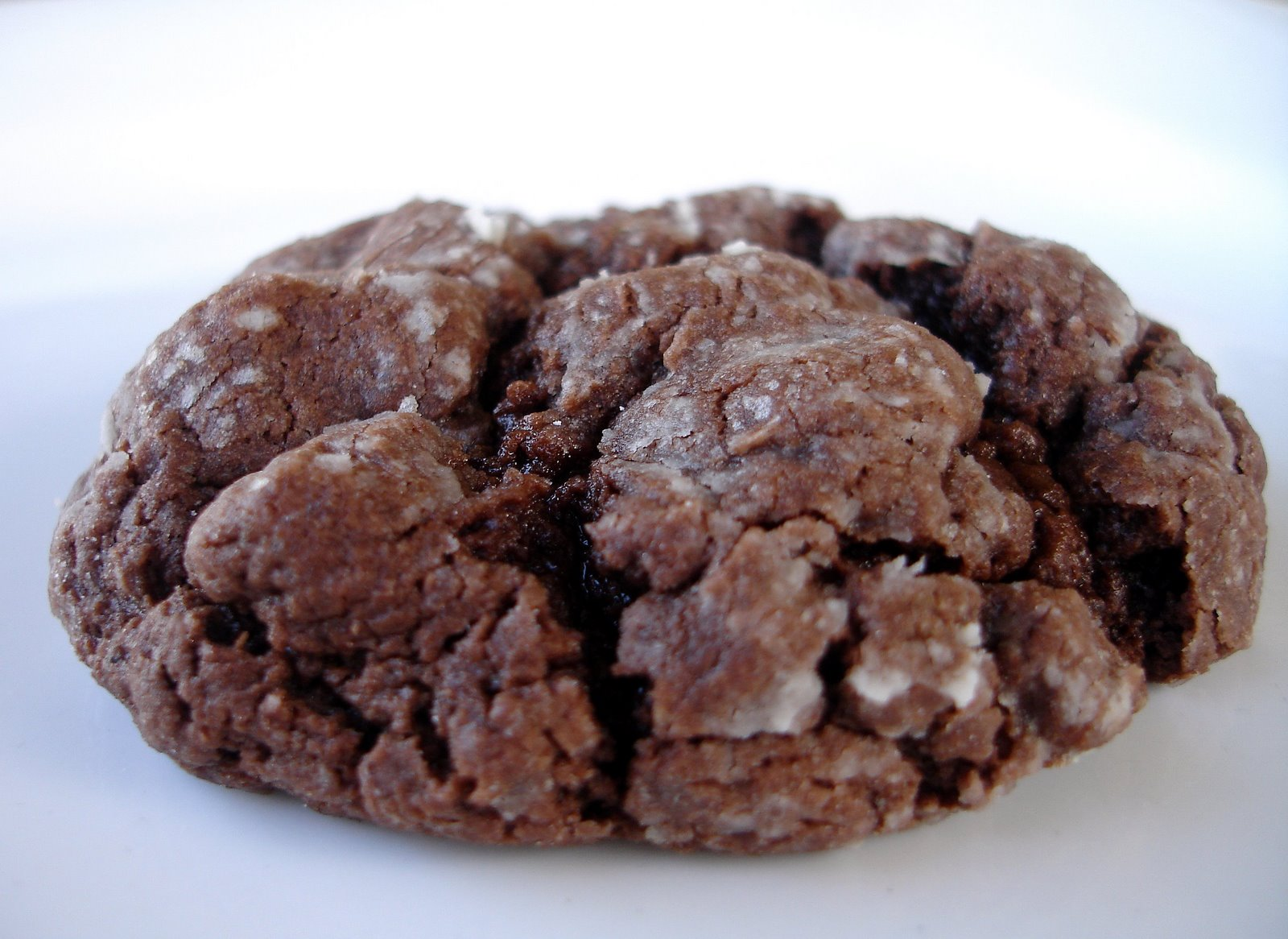 Chocolate Ooey Gooey Butter Cookies The Girl Who Ate