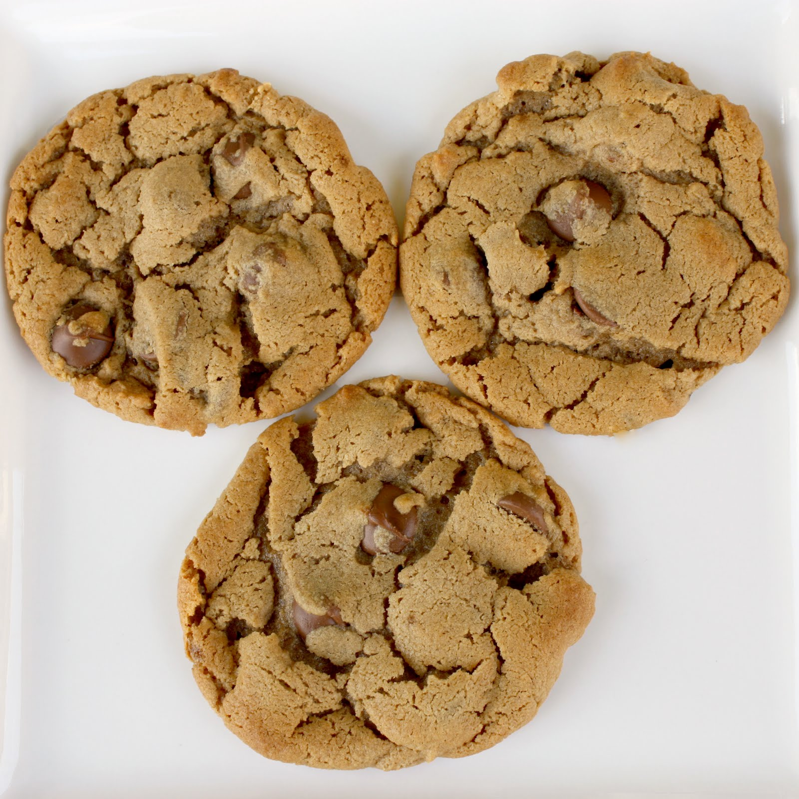 5 Ingredient Peanut Butter Chocolate Chip Cookies - The ...